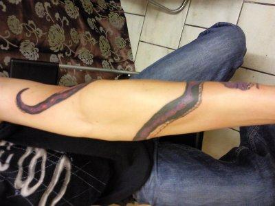 serpent 3 final the darkness my salon de tattoos. Black Bedroom Furniture Sets. Home Design Ideas